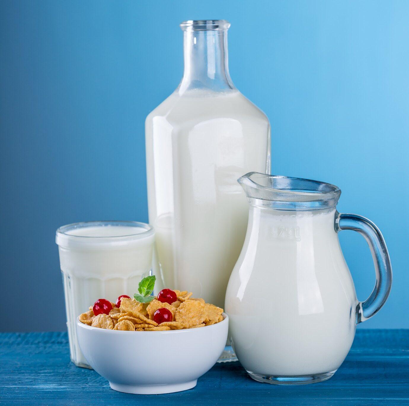 Cereálie s mlékem