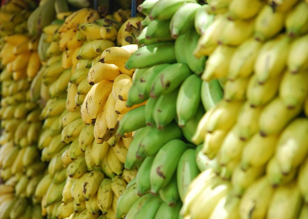 Banány