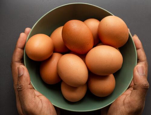 Výhody a nevýhody vejce. Kolik jich mohu sníst, aby byla zdravá?